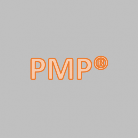 Online Course PMP® Spanish 60 Días No Exam