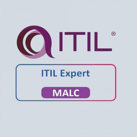 ITIL® Service Offerings and Agreements Capability  (Inglés)